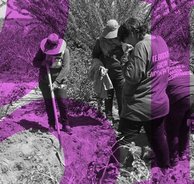 Cementerio clandestino colinda con Michoacán; hallan 116 cuerpos en últimas semanas