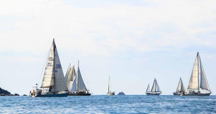 Festival de veleros logra más de tres millones de pesos y rompe récord en recaudación este año