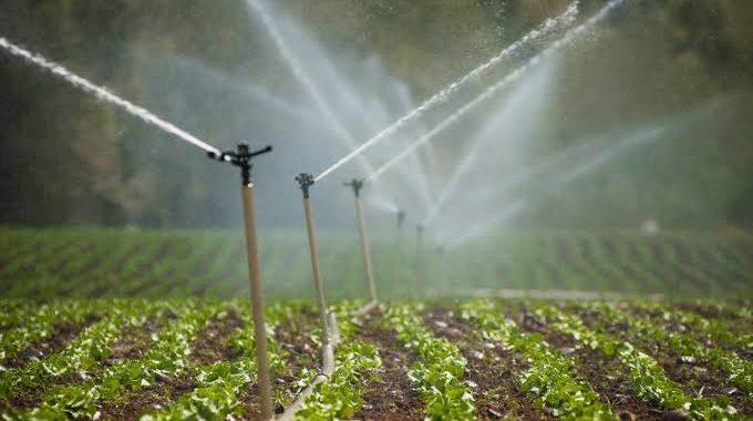 Mal uso agrícola deja sin agua a los michoacanos: Semaccdet