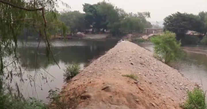 En riesgo de perderse cientos de hectáreas de plátano por sequía del río de Tecpan