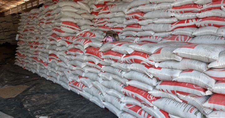 Ayuntamiento se deslinda de depuración de campesinos del programa del fertilizante en Tecpan