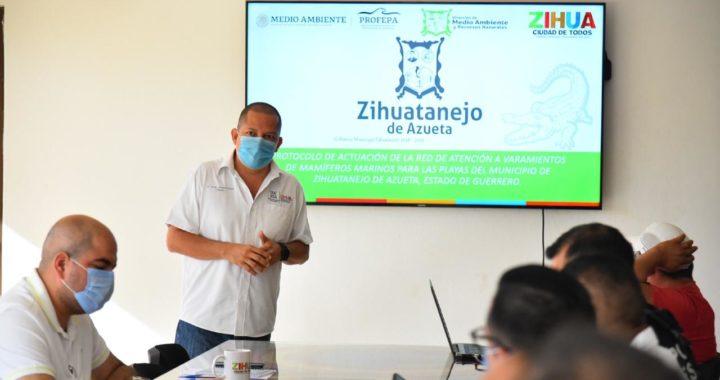Gobierno de Zihuatanejo crea comité de protección a las ballenas
