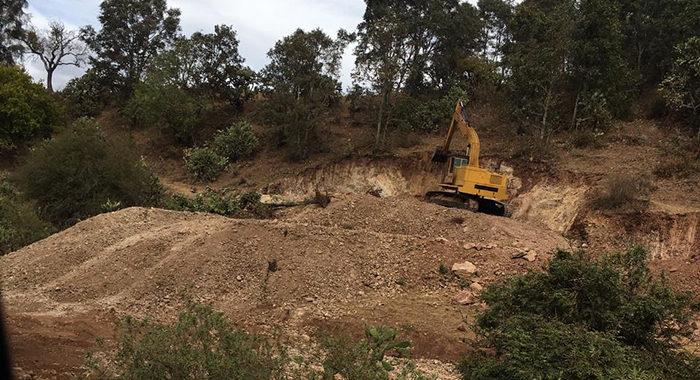 Comuneros van a la defensa de los bosques de Morelia tras ganar batalla a fraccionadora en Pico Azul