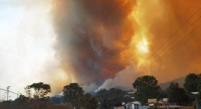 Vive Los Reyes uno de los peores incendios forestales y las autoridades han brillado por su lentitud para actuar