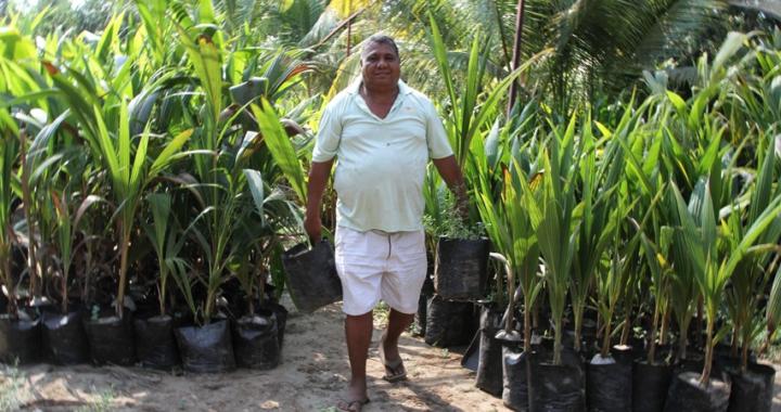 Fallece el coordinador del Cecoco en Costa Grande, Ethel Diego Galeana