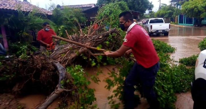 Casas inundadas y caída de árboles reportan en Atoyac por lluvias
