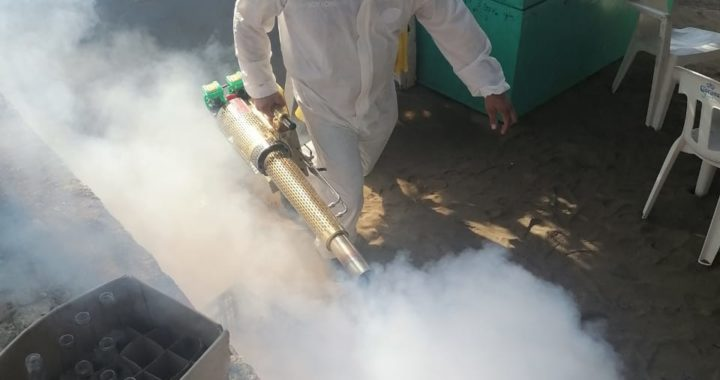 Organizan labores de fumigación en negocios de playa Puerto Vicente Guerrero